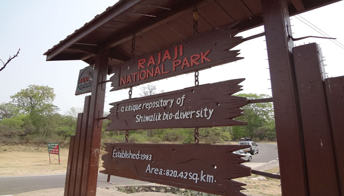 Best Tourist Places To Visit In Rajaji National Park